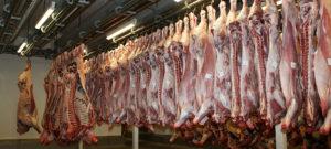 Intelligent Systems skal levere nyt lagerstyringssystem til Skare Meat Packers